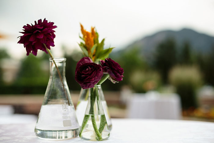 geek wedding beaker table design